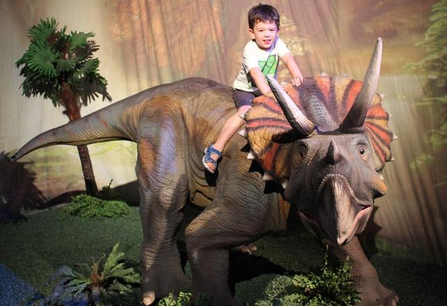 triceratops-animados